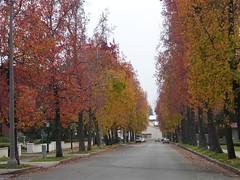 Dartmouth Street