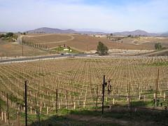 Rancho California Highway