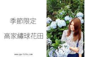 台北景點|水車寮高家繡球花田;季節限定的人間美景(2015.06中花況)