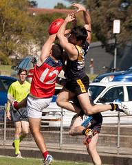 Pennant-Hills-v-Balmain-AFL-Division-1-0015