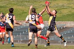 Pennant-Hills-v-Balmain-AFL-Division-1-0021