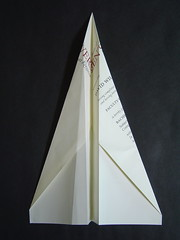 Paper Airplane Degree :: Top View