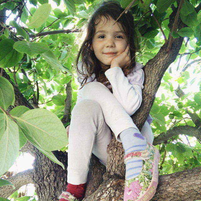 I always find her at the top of a tree... #magicalchildhood