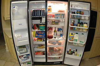 The Muse Refrigerator - Full frontal