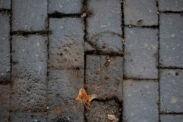 Close-up of wood pavers.