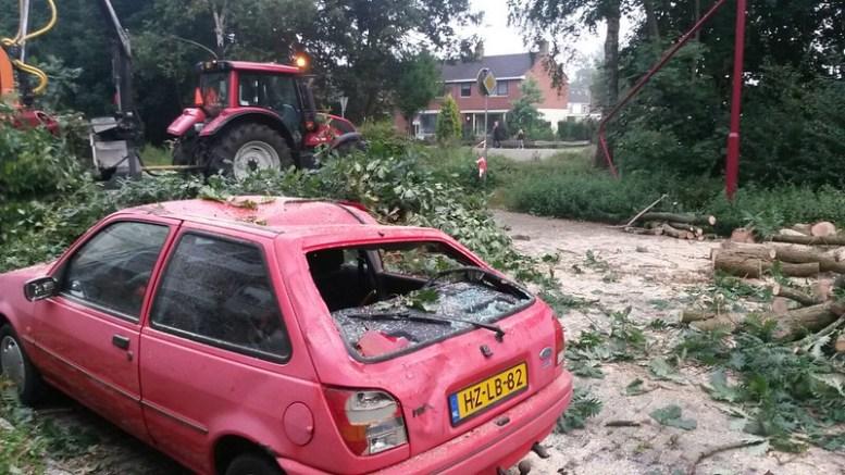 20150828141304 heerenveen boom 3
