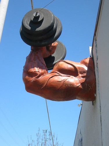 2005Mar-AustinTypeTour-032 - Hyde Park Gym Muscle