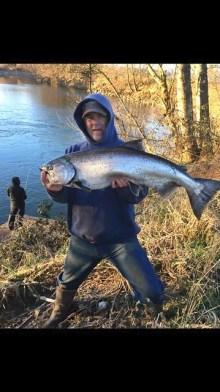 Kilchis河上的鲑鱼