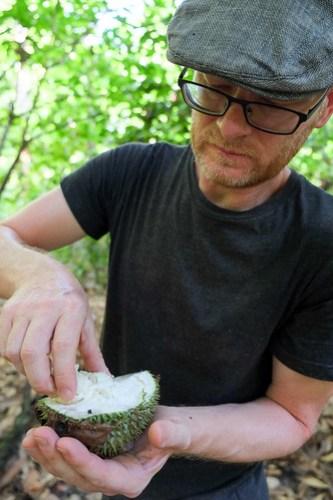 Durian from the tree. Sawai, Pulau Seram