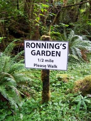Ronning's Garden