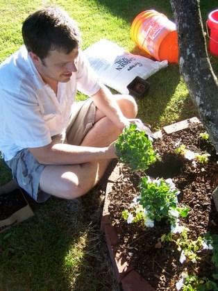 David Planting