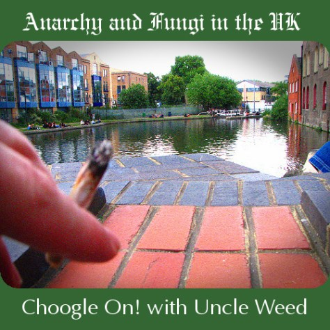 Anarchy and Fungi in the UK - Choogle on #42