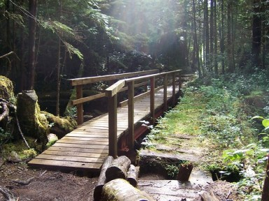 cape scott trail