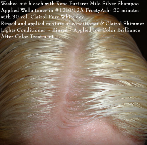 How To Bleach Your Hair Platinum Blonde Or White Krista