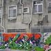 tainan graffiti 59