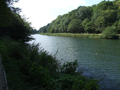 Creswell Crags Gorge 3