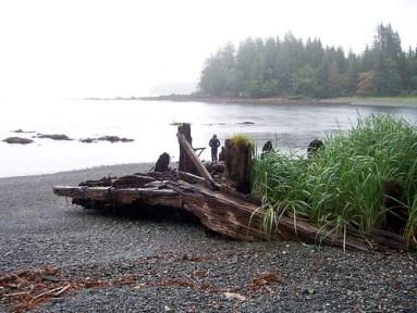 shipwreck, fisherman's cove