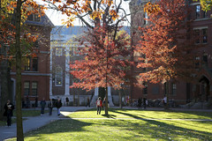 Harvard Yard 2 (Lehman Hall)
