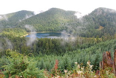 Cedar Lake through the Mist, near Wilkeson, Washington