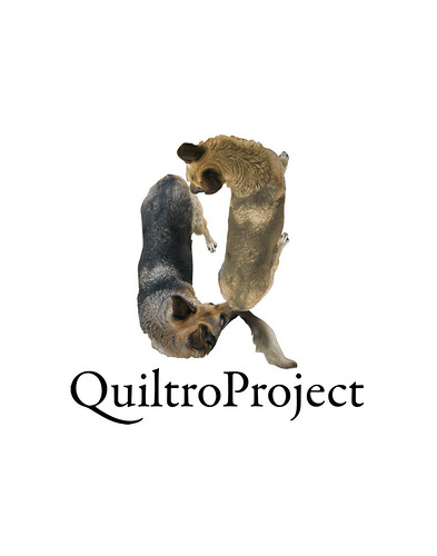 "QuiltroProject • <a style=""font-size:0.8em;"" href=""http://www.flickr.com/photos/8565265@N03/1321864305/"" target=""_blank"">View on Flickr</a>"