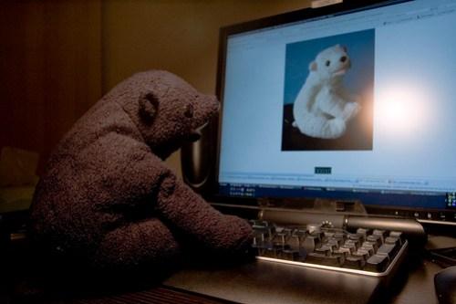 Online Dating for Bears