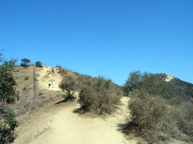 Runyon Canyon 009