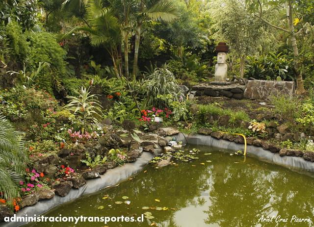 Jardín Botánico Tau Kiani (Isla de Pascua) - Moai