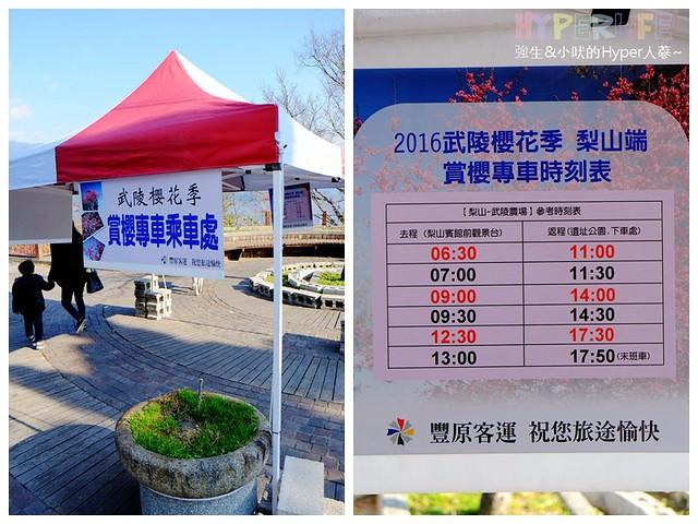 合歡山&武陵農場 (12)