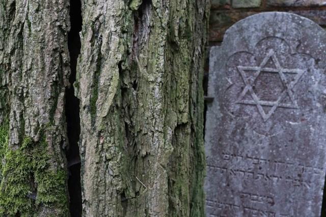 Delhi's Bandaged Heart – Henry Wadsworth Longfellow, Venice's Ancient Jewish Cemetery