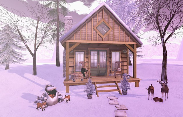 Snowy Friends And Cozy Rooms