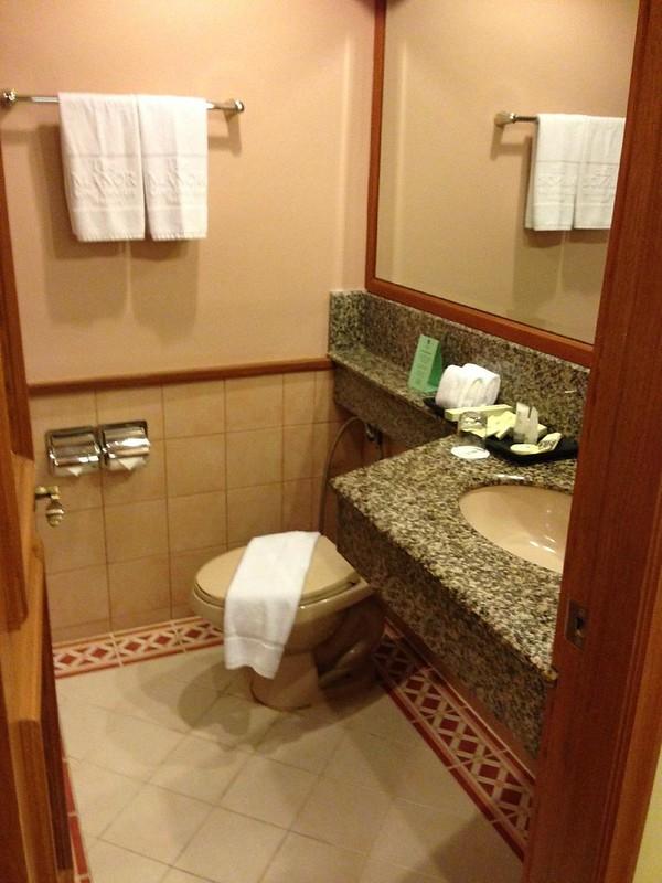 The Manor bathroom