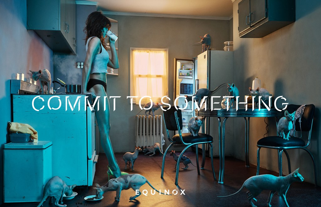 Equinox - Commit to Something 5