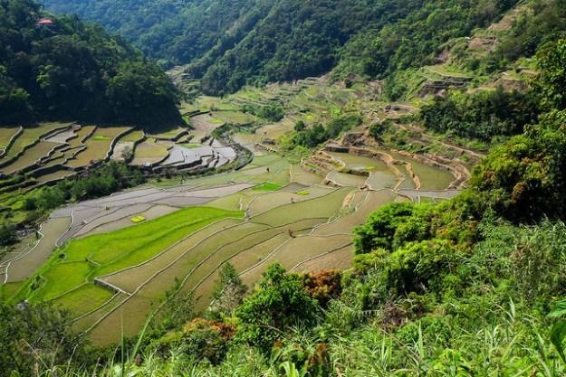 Ifugao Valley