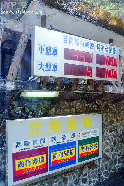 合歡山&武陵農場 (14)