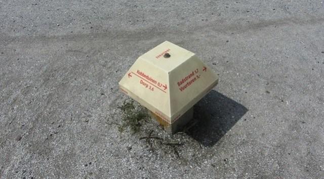 joh de jongpad schier paddestoel 22631