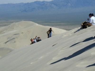 Kelso Dunes - 13