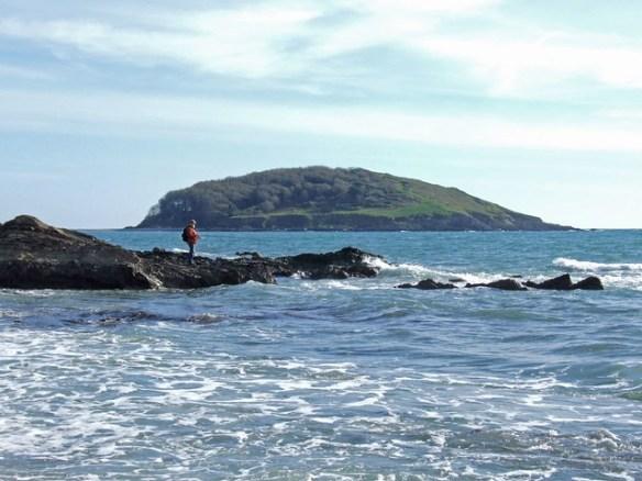 Man fishing, Looe island in background