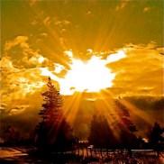 Sun Bible!