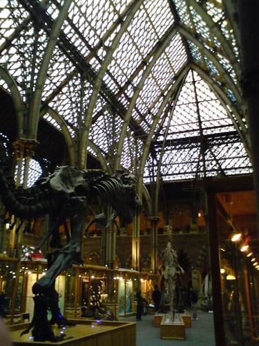 Dinosaur in church