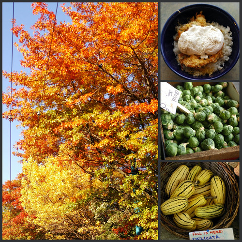autumn comfort foods