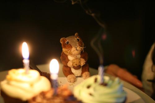 Lisa's Birthday-1