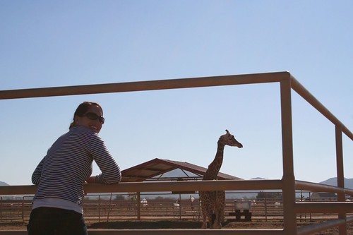Yep, me and a giraffe. In Arizona. I love crazy wealthy people.