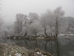 Struma River in Winter