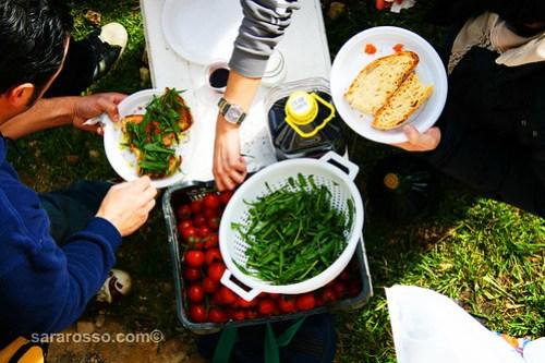 Eating pane e pomodoro in Puglia