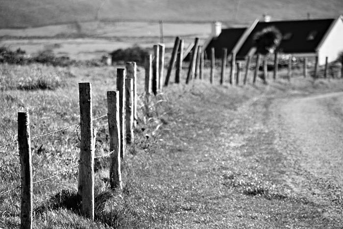 Laneway fence