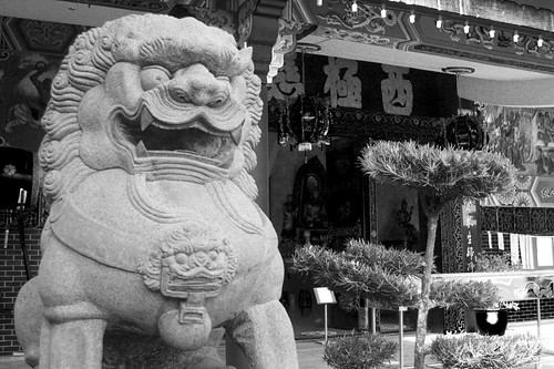 Chinese Temple, guardian lion