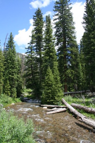 Wyoming Hike