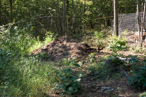 Permaculture: 1st bed arc - inputs