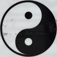 yin yan