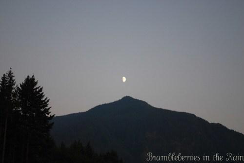 Moonlight Evening